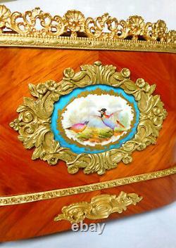 Grande jardinière Napoléon III en bois de rose, bronze doré porcelaine de Sèvres