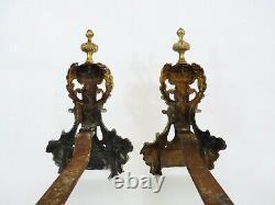 Paire de chenets de cheminée en bronze à pâtes de lion. Début XXème